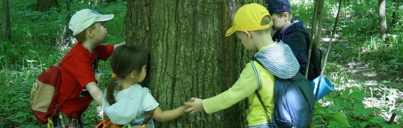 Поход в лес старшей группы